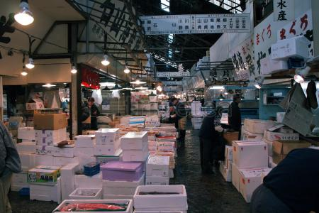 Ruta del primer dia en@Tokio: Mercado de Tsukiji, Distrito de Ginza, Odaiba,Museo de Ciencias e Innovación y@Roppongi