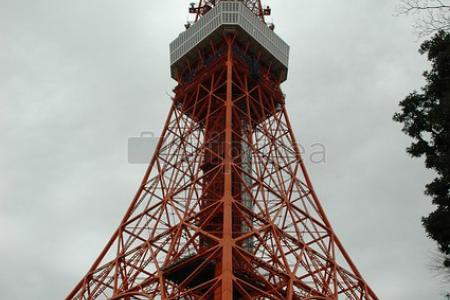 Tokio dia 1:Barrio de @Shinjuku, @Harajuku y santuario Meiji, Calle @Takeshita, Barrio de Shibuya y @Torre de Tokio