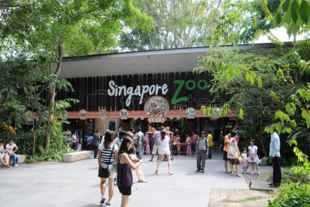 Dia 1: Zoo y Safari nocturno
