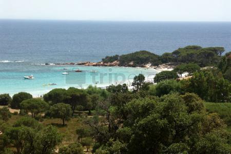 Playa de la Palombaggia